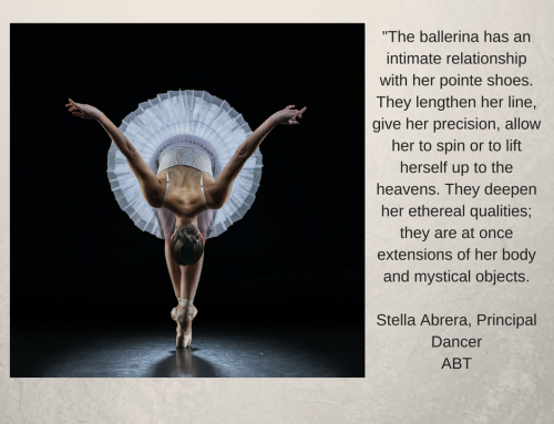 The Anatomy of a Pointe Shoe & How it should Fit